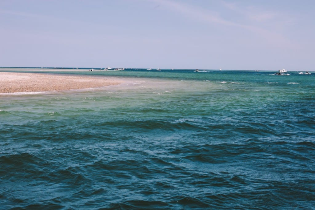 Sandy Neck Point